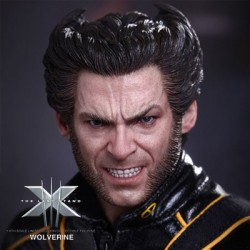 Wolverine ( Sixth Scale Figure by Hot Toys)